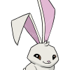 How to Draw Bunny, Animal Jam