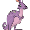 How to Draw Kangaroo, Animal Jam