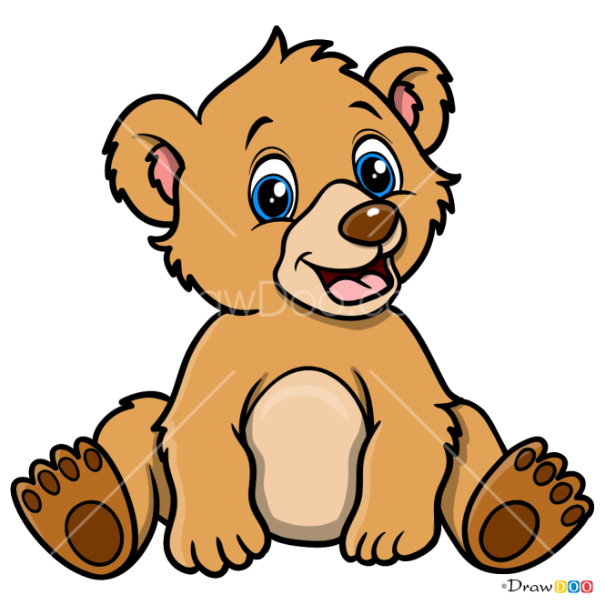 How to Draw Baby Bear, Baby Animals