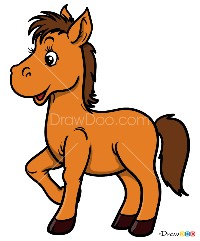 How to Draw Foal, Baby Animals