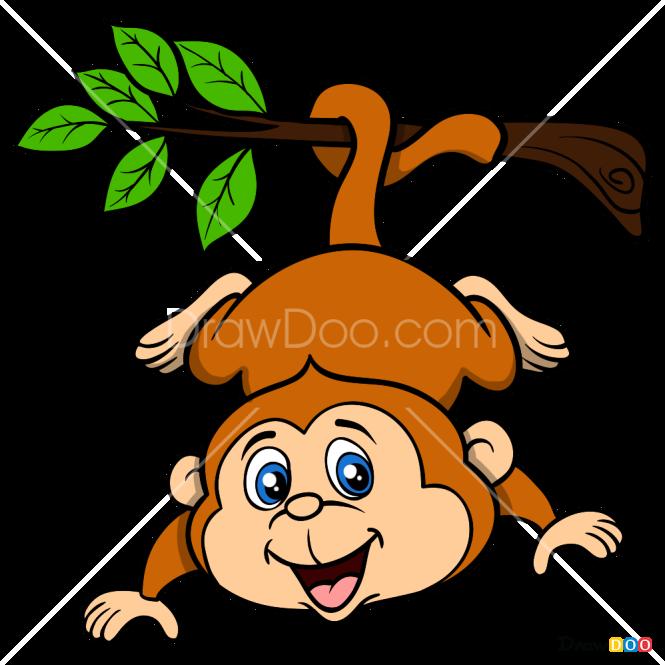 How to Draw Monkey, Baby Animals