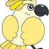 How to Draw Kakadu, Birds