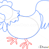 How to Draw Cock, Birds