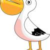 How to Draw Pelican, Birds