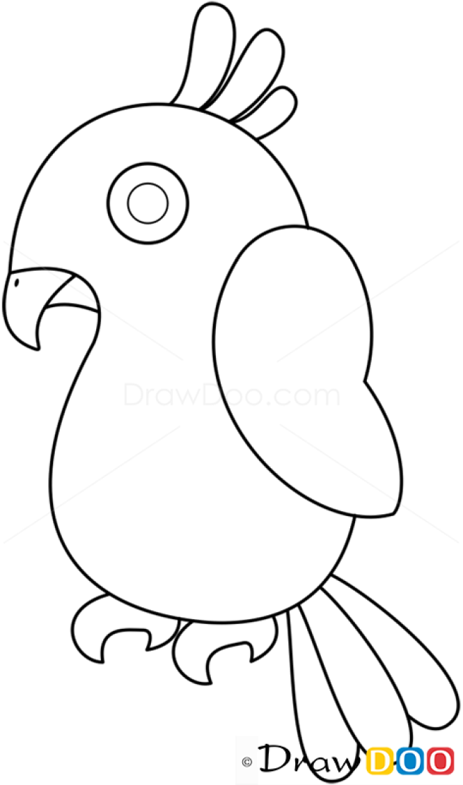 How to Draw Parrot, Birds