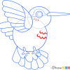 How to Draw Colibri, Birds
