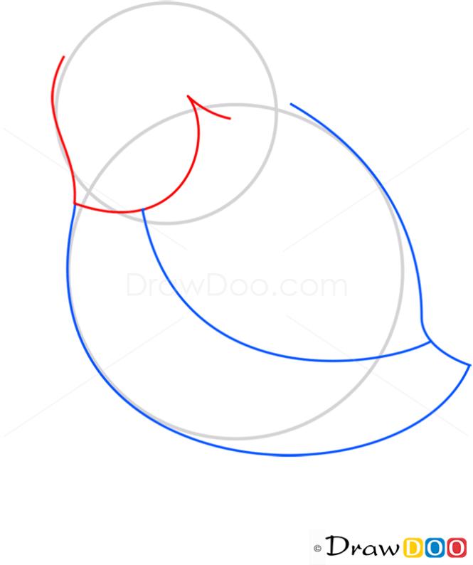 How to Draw Skylark, Birds