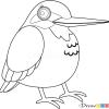 How to Draw Kingfisher, Birds