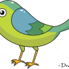 How to Draw Bee-eater, Birds