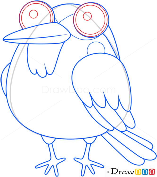 How to Draw Robin, Birds