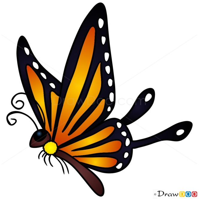 How to Draw Adorable Butterfly, Butterflies
