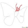 How to Draw Cute Butterfly, Butterflies