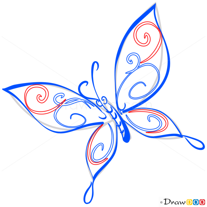 How to Draw Minimalistic Butterfly, Butterflies