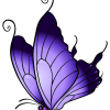 How to Draw Purple Butterfly, Butterflies