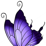How to Draw Purple Butterfly, Butterflies