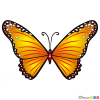 How to Draw Yellow Butterfly, Butterflies
