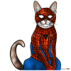 How to Draw Spider Cat, Cats Superheroes