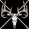 How to Draw Deer Skull, Deer