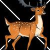 How to Draw Deer, Deer
