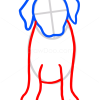 How to Draw Puppy, Labrador Retriever, Dogs and Puppies