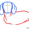 How to Draw Dachshund, Dogs and Puppies