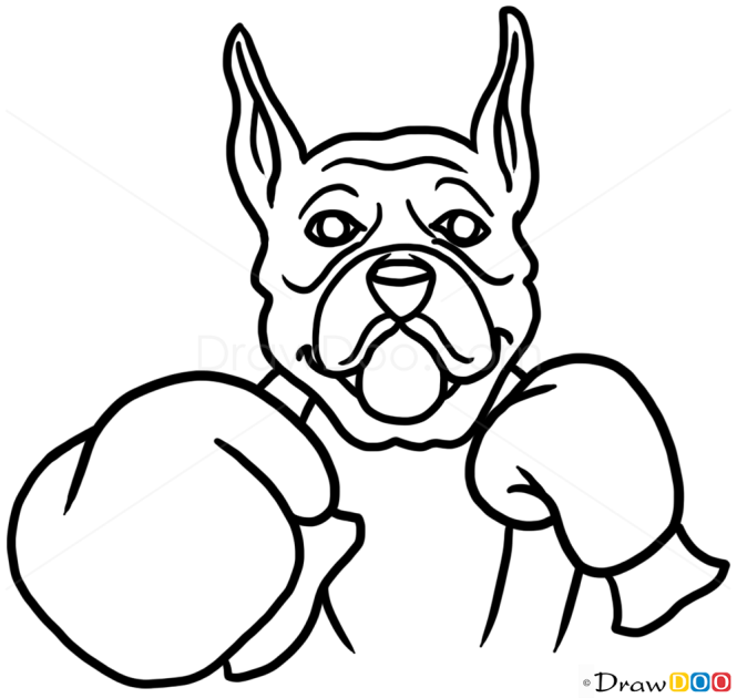 How To Draw Boxer Dog Dogs And Puppies