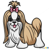 How to Draw Shih Tzu Dog, Dogs and Puppies