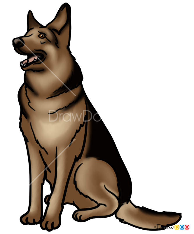 How to Draw Dogmeat, Fallout
