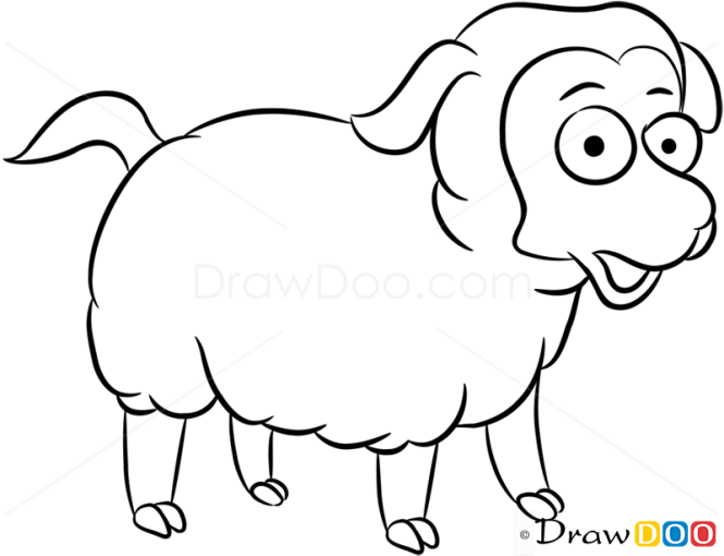 How to Draw Sheep, Farm Animals