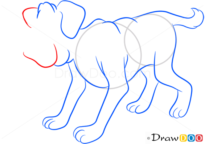 How to Draw Dog, Farm Animals