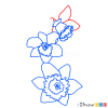 How to Draw Narcissus, Flowers