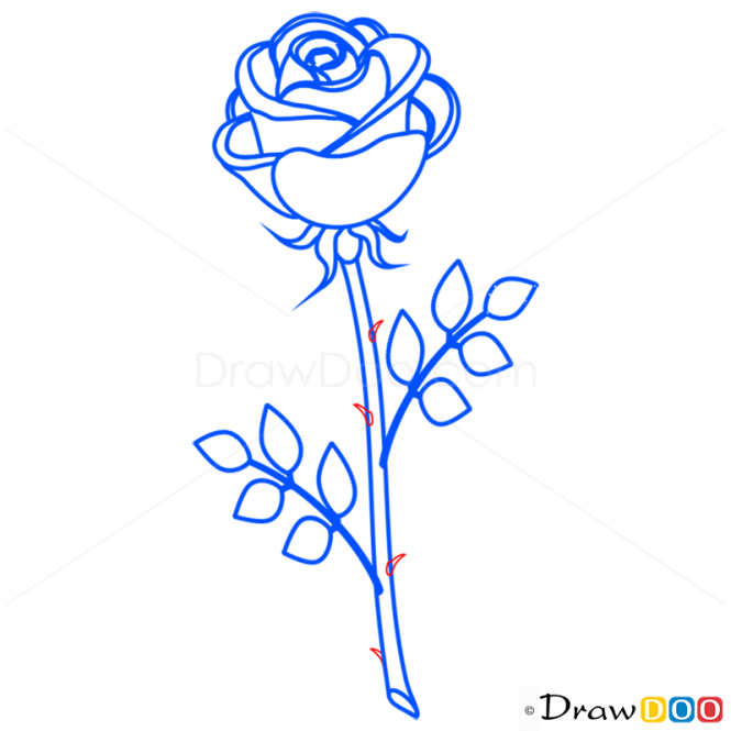 How to draw rose easy flowers