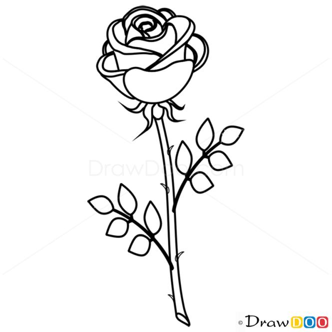 How to draw rose easy flowers mightylinksfo
