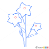 How to Draw Bellflower, Flowers