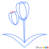 How to Draw Tulip, Flowers