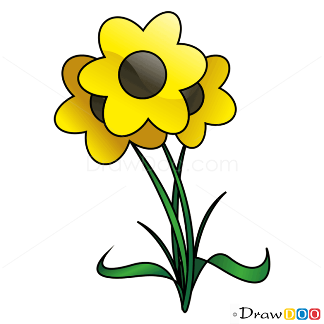 How to Draw Buttercup, Flowers
