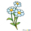 How to Draw Camomile, Flowers
