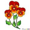 How to Draw Iris, Flowers