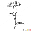 How to Draw Knapweed, Flowers