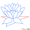How to Draw Water Lily, Flowers