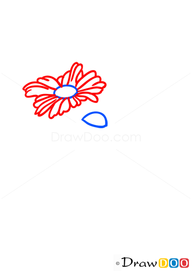 How to Draw Boquet, Flowers