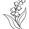 How to Draw Lily of Valley, Flowers