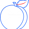 How to Draw Peach, Fruits