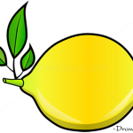 How to Draw Lemon, Fruits