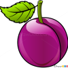 How to Draw Plum, Fruits