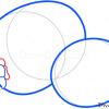How to Draw Kiwi, Fruits