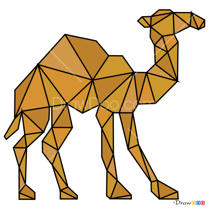 How to Draw Camel, Geometric Animals