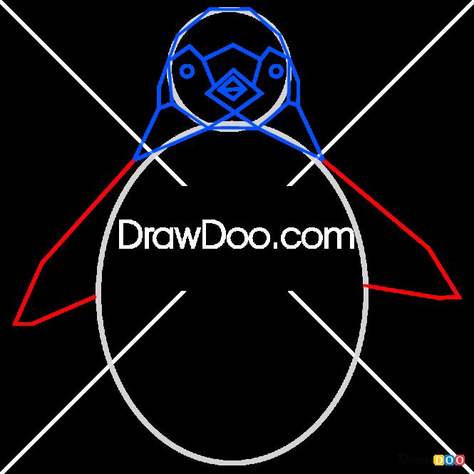 How to Draw Penguin, Geometric Animals