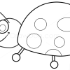 How to Draw Ladybug, Insects
