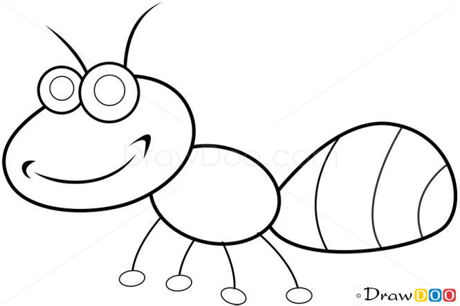 how to draw ant insects